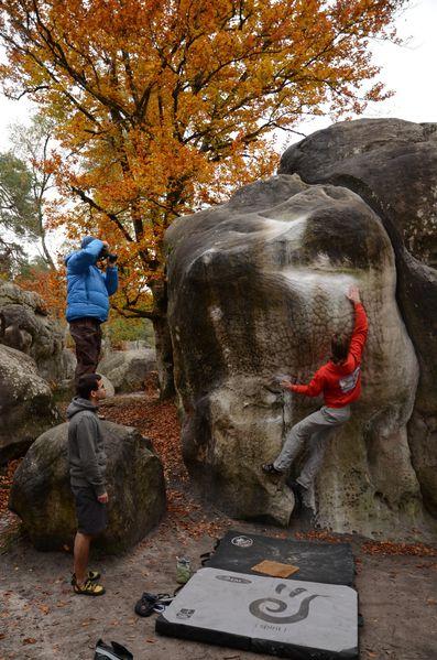 Fontainebleau2012 4152
