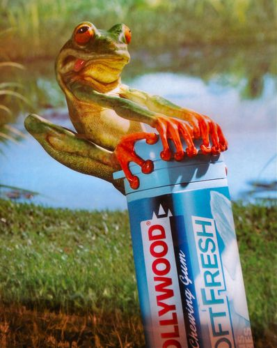 affiche métro Hollywood chewing-gum grenouille