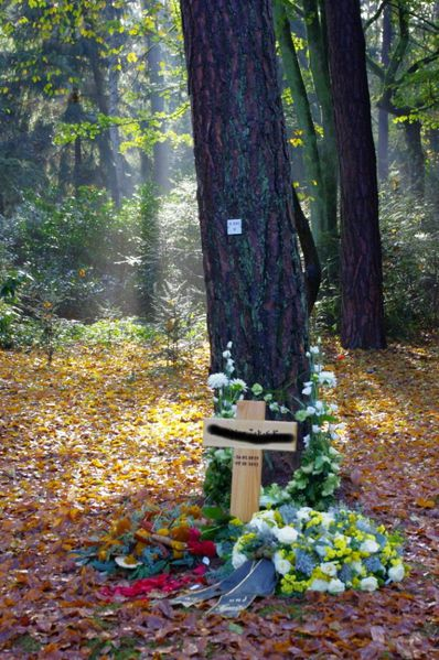 2012-Friedhof_web-Kopie-1.jpg