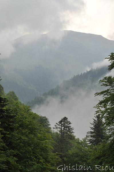 Lac-bleu-21-05-2011 0026