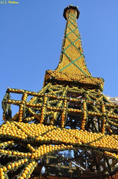 limoni2.jpg