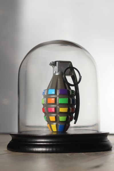 chat-maigre-grenade-couleur-1