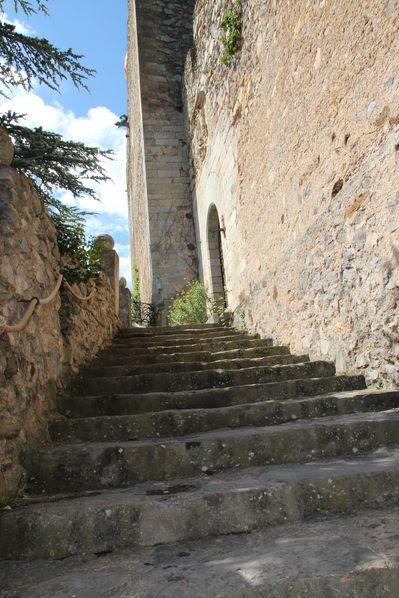 Pyrenees-orientales-3090.jpg