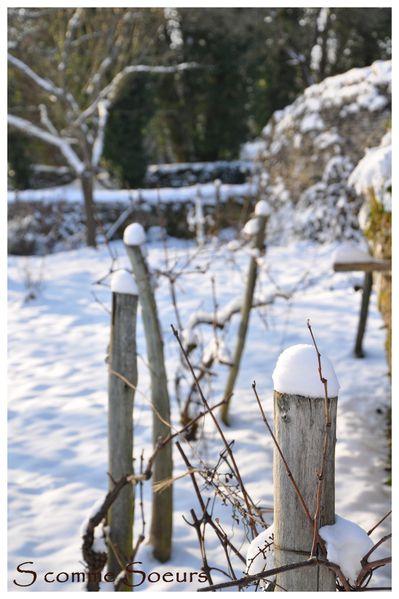 2010-12-26 neigenoel201010