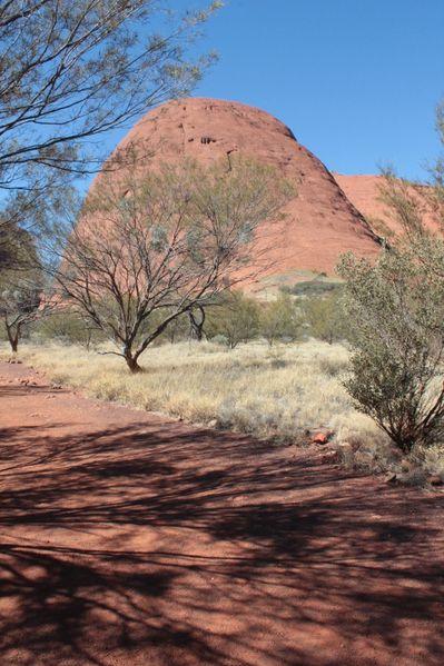 Aussie-oie-MAI-2012 9247 (533x800)