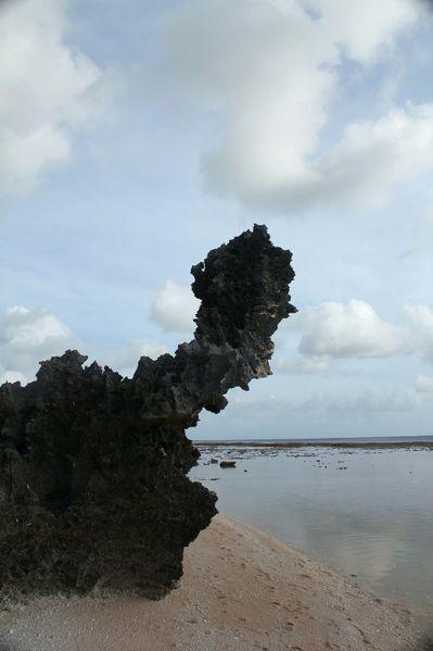 Polynesie-2011-2 7460 (533x800)