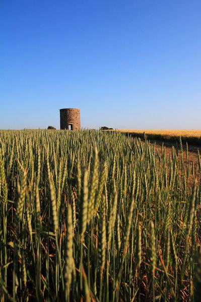 01-St Martin le vieux moulin- du Hutrel
