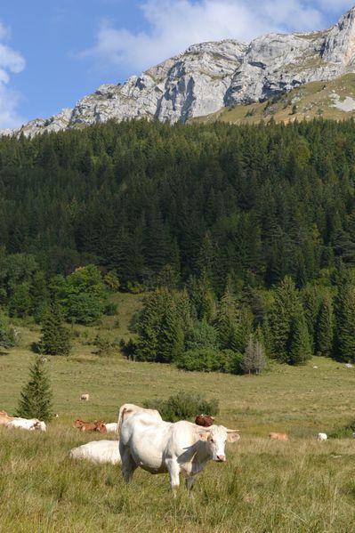 2012-09-22-vallon-de-la-fauge-val-de-lans 0613