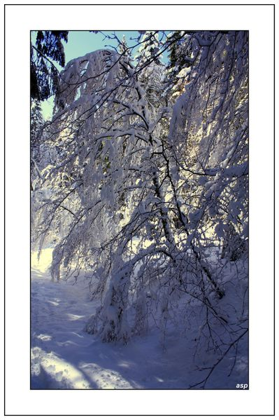 la-ruchere-alienard-page 2586 GF