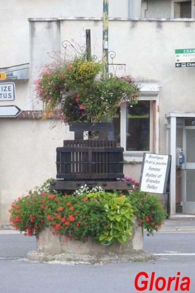 Cramant--Marne-.JPG