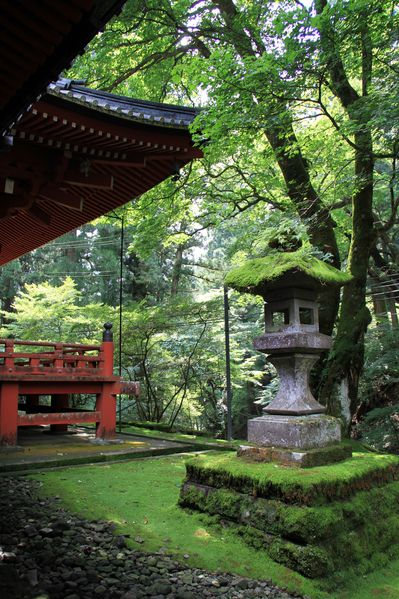 Hello Japan - Green Shrine