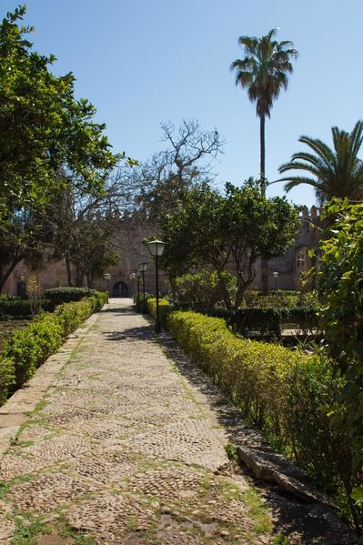 Maroc-2012---Rabat-6.jpg