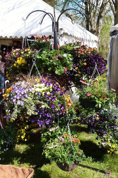 st-jean-de-beauregard---5-avril-2014---flower-basket.jpg