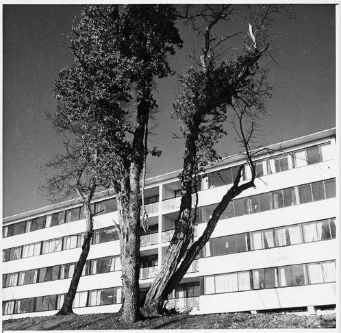 jean dubuisson 1951 1952 shape village saint germain en laye les commerces de saint germain. Black Bedroom Furniture Sets. Home Design Ideas