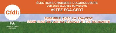 Election chambres 2013