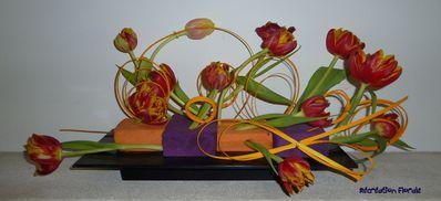 Explosion de tulipes