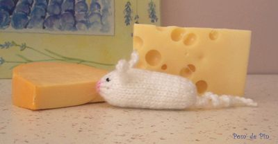 souris blanche + fromage