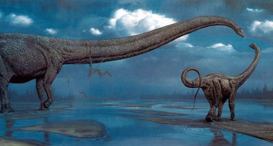sauropodes.jpg