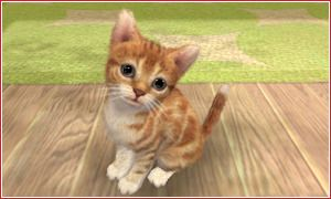 nintendogs-cat.jpg