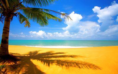 plage-tropicale