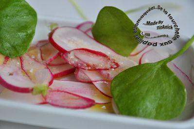 salade-radis-pourpier-logo.jpg
