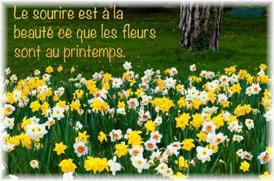 printemps-photo.jpg
