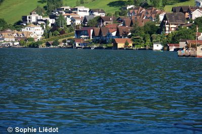 Beckenried--Lac-des-4-cantons-2013--19-.JPG