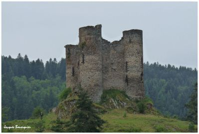 Cantal Chateau Alleuze 2