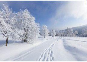 2013-12-01_164618.jpg