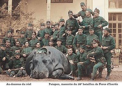 Patapon-mascotte-du-20eme-bataillon-de-Force-dIneptie.jpeg