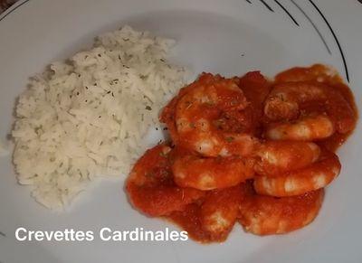 Crevettes cardinal 3