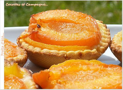 Tartelettes-peches-et-abricots-.JPG