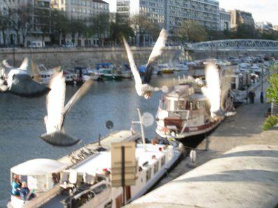 mardi-13-avril-2011--Blois-surtout-006.jpg