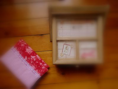 trousse anabrode (3)