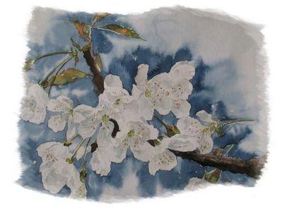 Bouquet-de-printemps-002