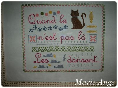 quand le chat marie ange