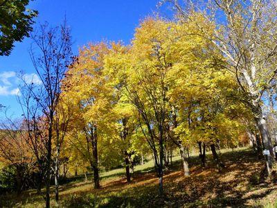 2011-10-26---312.jpg
