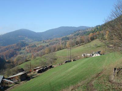 2012-11-14 g - 794