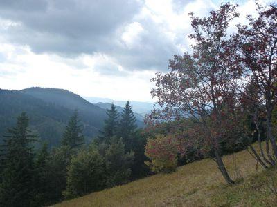 2013-09-25 - Jean-Pierre - 490