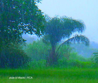 pluie à Mbaïki