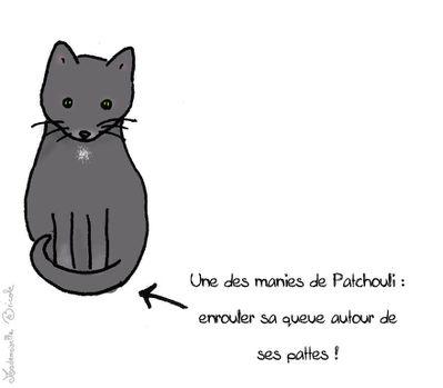 Patchouli présentation