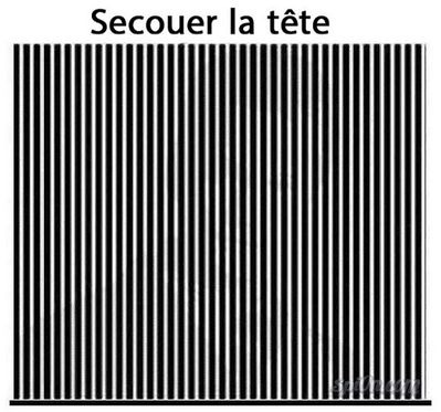 secouer-la-tete-illusion.jpg