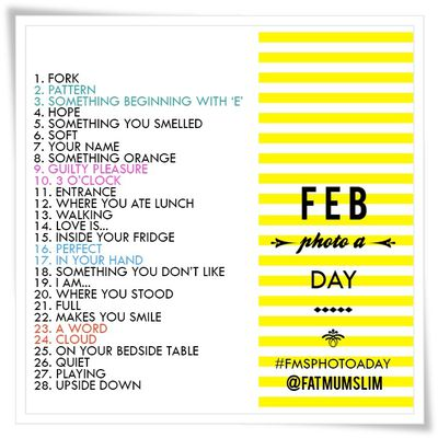 February-photo-a-day FEVRIER 2013