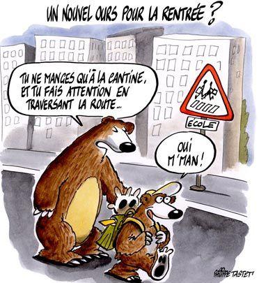 rentree-de-l-ours