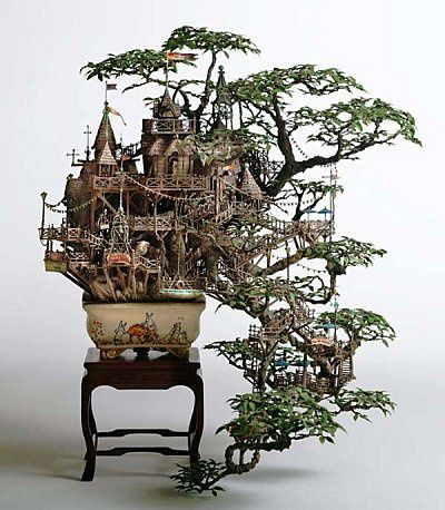 bonsai-takanori.jpg