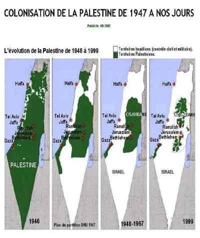 carte_palestine_territoires_occupes_1947_carte_palestine_20.JPG