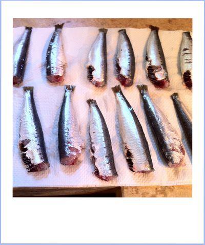 sardine-escabeche 5336