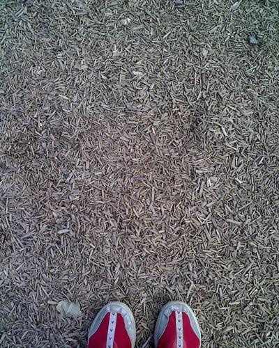 pas_2011_09_14_square.jpg