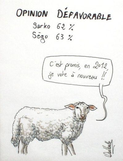 275 - mouton vote
