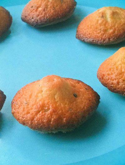 Mini-madeleine citron pavot